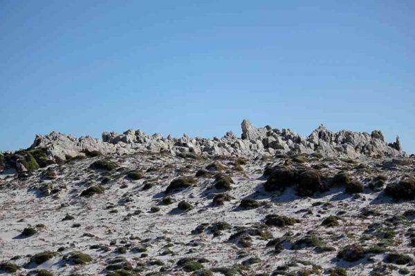 Falklands_02