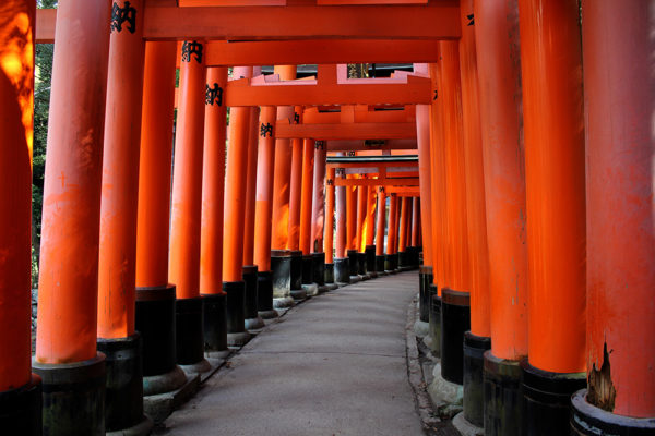 A rare view of the torii path that isn't crowded with people
